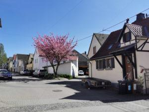 Königstuhlstraße